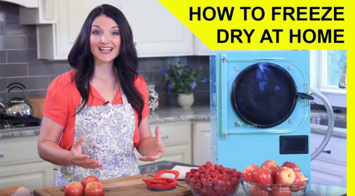 How to Freeze Dry at Home